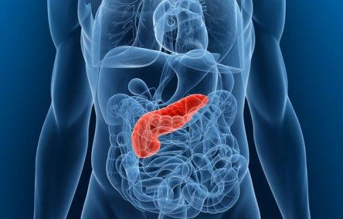 Sintomas Cancer De Pancreas