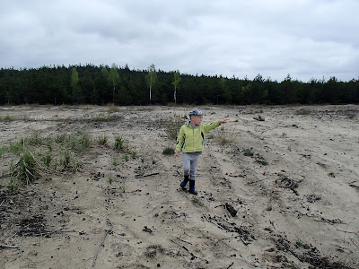 Pustynia Błłędowska, grzyby na środku Pustyni Błędowskiej, zabawa na piasku