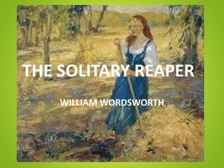 Short summary of the solitary reaper