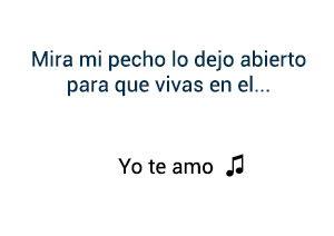 Chayanne Yo Te Amo significado de la canción.