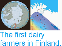 http://sciencythoughts.blogspot.com/2014/08/the-first-dairy-farmers-in-finland.html