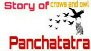 Story of crows and owl Panchatatra