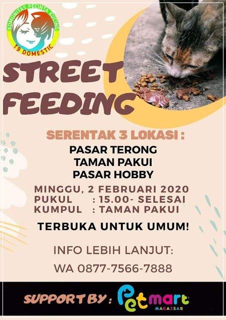Beri makan kucing