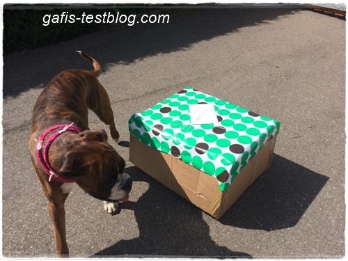 Ein großes Geschenkpaket