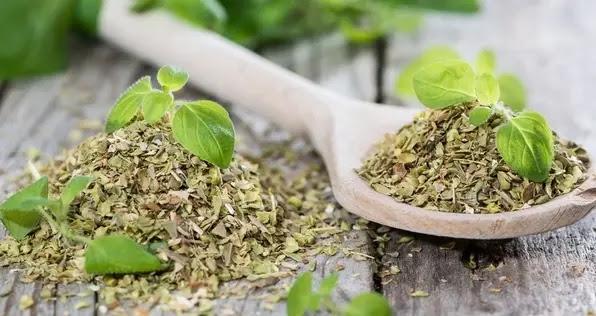 شاي الأوريجانو لمكافحة تقلصات الدورة الشهرية