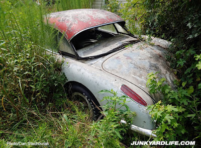 Weeds as tall as roof next to 1959 Corvette.