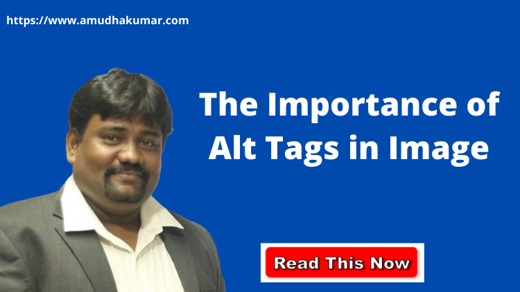 The Importance of Alt Tags in Image