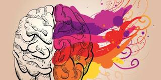 Psikoloji Bölümü İçin Kaç Net Yapmak Gerekiyor?