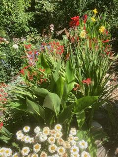Lori's Garden