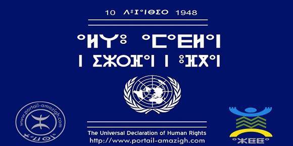 Universal Declaration of Human Rights amazigh
