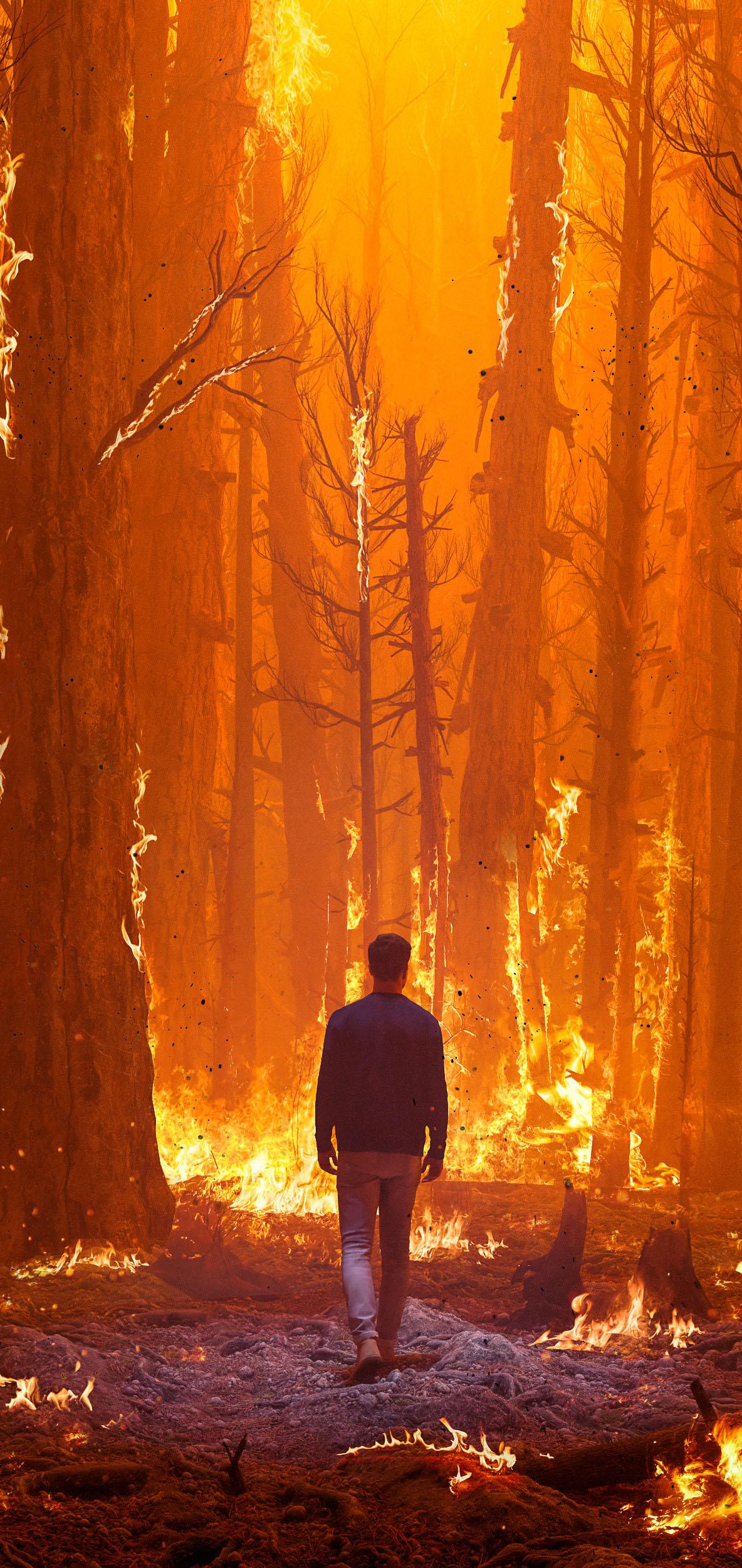 fire forest man