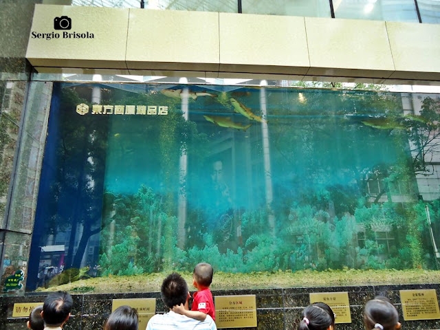 Showcase aquarium in Nanjing Road Pedestrian Street - Shanghai