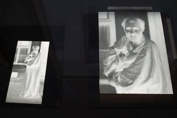 vienne modernisme viennois leopold museum moriz nähr photo gustav klimt