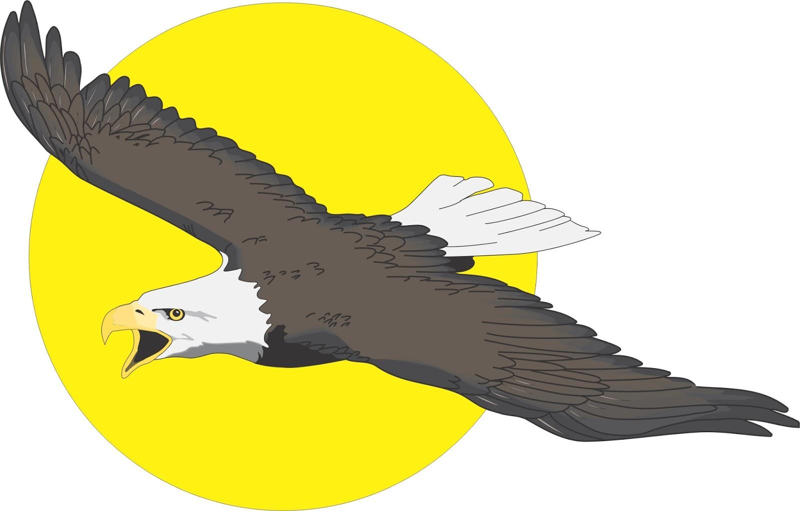 Download 63+ Gambar Burung Elang Animasi Paling Baru Gratis