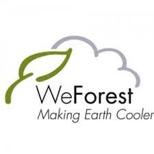 Job Opportunity at WeForest/GRA, Monitoring and Evaluation Coordinator