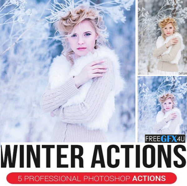 5 Professional Winter Actions