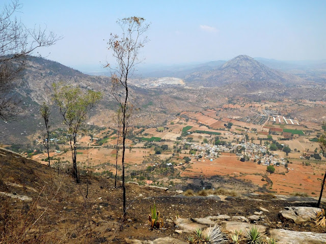 View from the top of Nandi Hills