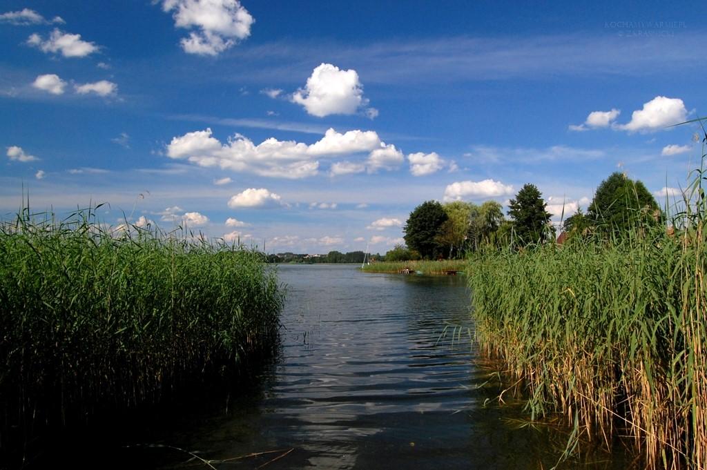 Jezioro Wulpinskie | Dorotowo
