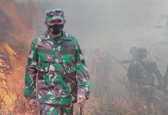 Dandim Abdya Dukung Langkah Kepolisian Ungkap Pelaku Karhutla