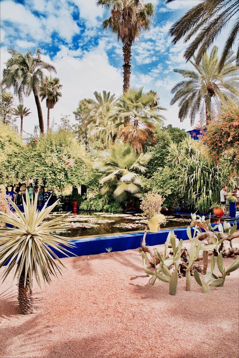 marrakesz ogród majorelle, Marrakesz ogród ysl Laurent Jardin majorelle cena