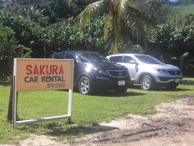 display of cars for rent