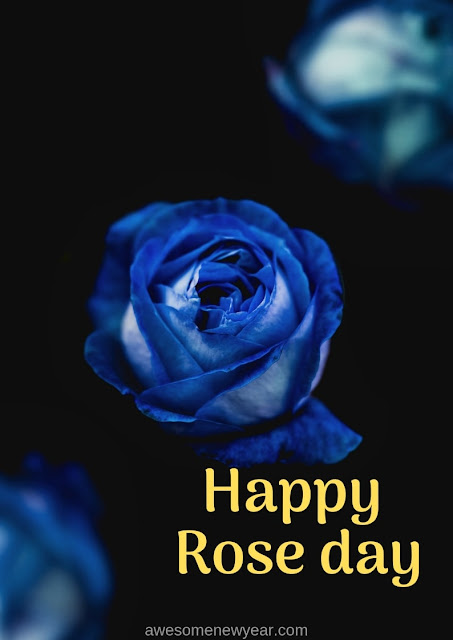 Best Rose Day Pics Photos Greetings for WhatsApp