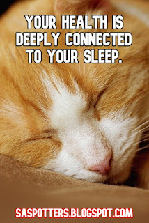 Your health is deeply connected to your sleep.
