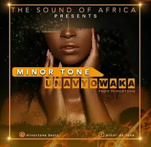 Download Audio   Minor Tone - Unavyowaka