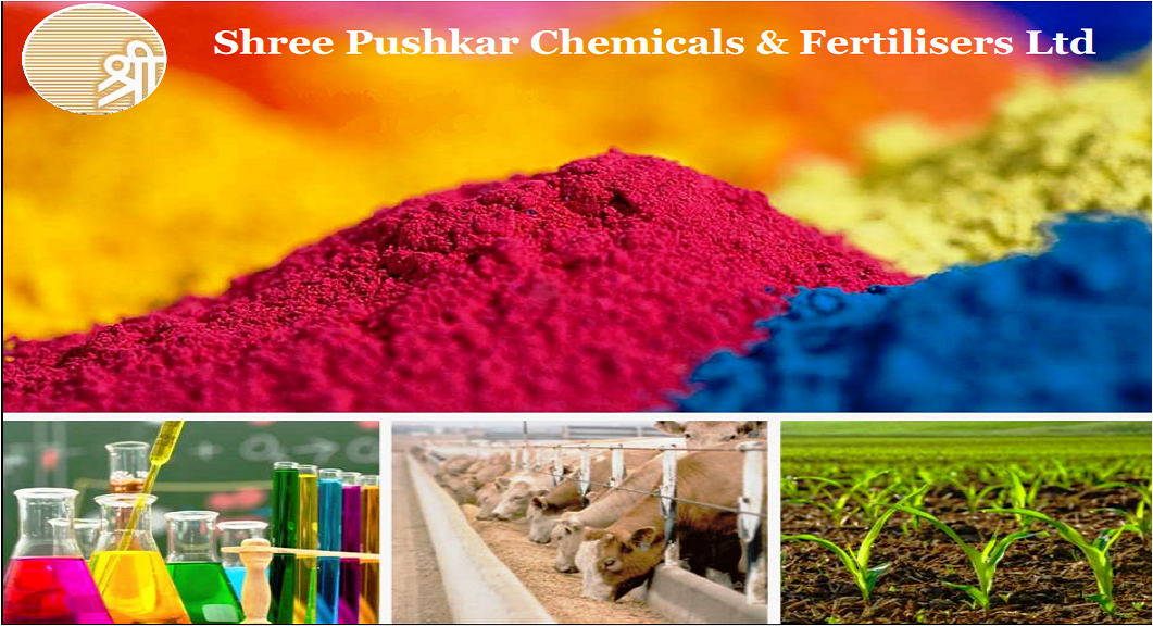 Best Stock Picks from Dolly Khanna: Shree Pushkar Chemicals and