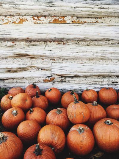 triflingthing.tumblr.com