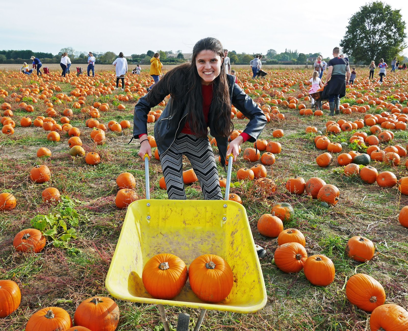 Kat Last at Pick Your Own Pumpkin in Sevington, Ashford