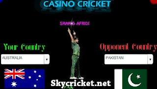 Play Casino cricket game
