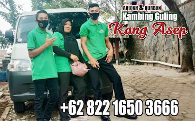 Spesialis Kambing Guling Kota Bandung,kambing guling kota bandung,kambing guling bandung,kambing guling,