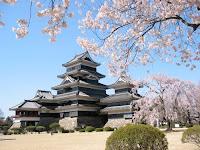 Sakura Time Approaching