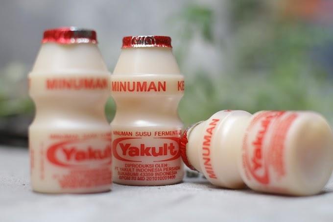 Mengenal Yakult Minuman Probiotik Asal Jepang