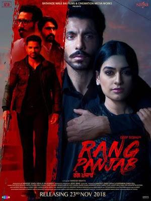 Rang Panjab (2018) Punjabi 5.1ch 720p | 480p WEB HDRip ESub x264 950Mb | 350Mb