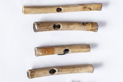 High status female found buried at Aspero archaeological site in Peru