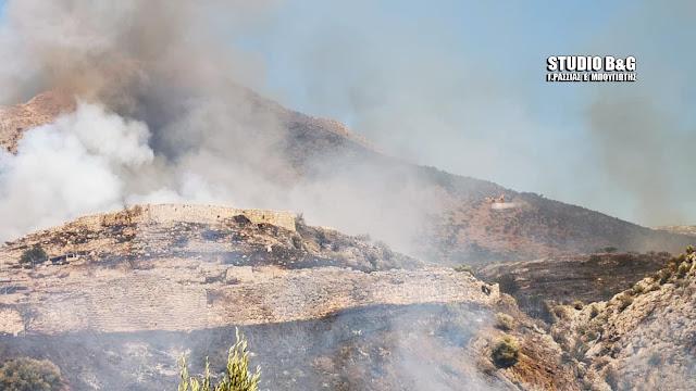 Ο ΣΥΡΙΖΑ Άργους Μυκηνών αδειάζει Πανοβράκο και ζητάει να αποδοθούν ευθύνες για την πυρκαγιά στις Μυκήνες