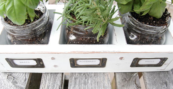 DIY thrifted herb garden with mason jars