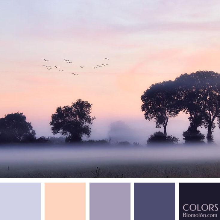 variedad_en_color_paletas_de_colores_101
