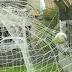 Copa Aramis Polli tem média de 3,50 gols por partida