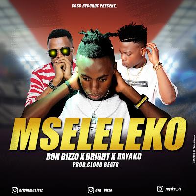 Download Audio   Don Bizzo Ft. Bright & Rayako - Mseleleko