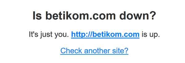 cek websiite apakah down atau tidak - server not found