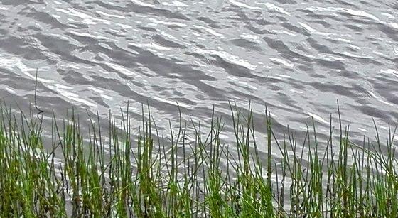 joki liplattaa kaisla