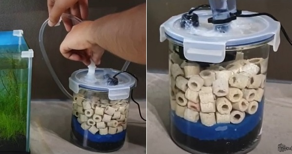 Filling canister filter with water