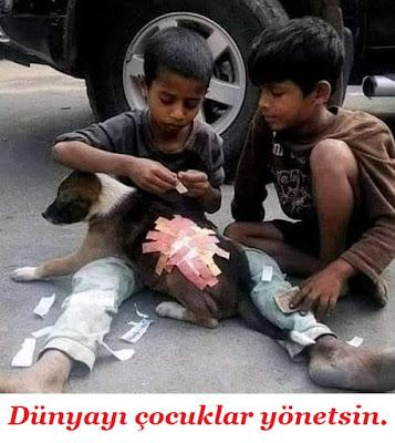 Dünyayı çocuklar yönetsin, merhamet, çocuk, köpek, yaralı, harçlık, tedavi, hastalık, sevimli dostlar, iyi yürekli insanlar, iyilik