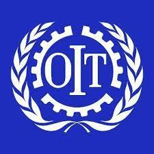 Organisation international du travaail