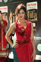 Videesha in Spicy Floor Length Red Sleeveless Gown at IIFA Utsavam Awards 2017  Day 2  Exclusive 02.JPG