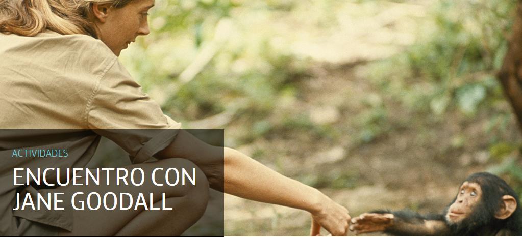 Encuentro con Jane Goodall en Espacio Fundación Telefónica