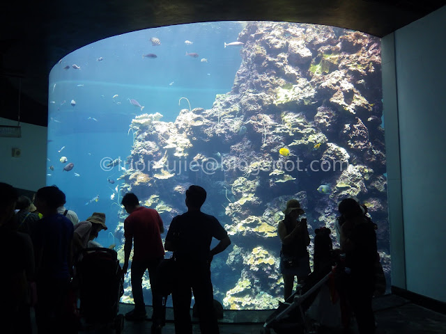 Kenting National Museum of Marine Biology and Aquarium